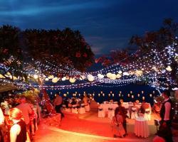 Fairy light tails on trees