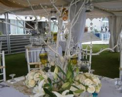 centerpiece with wood branch