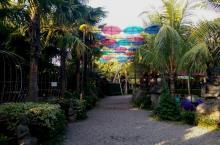 selfi spot -big garden corner